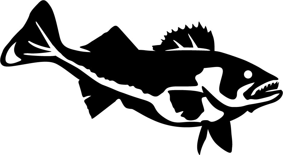 Hungry Walleye Wall Decal Wall Decals Fish Silhouette Walleye