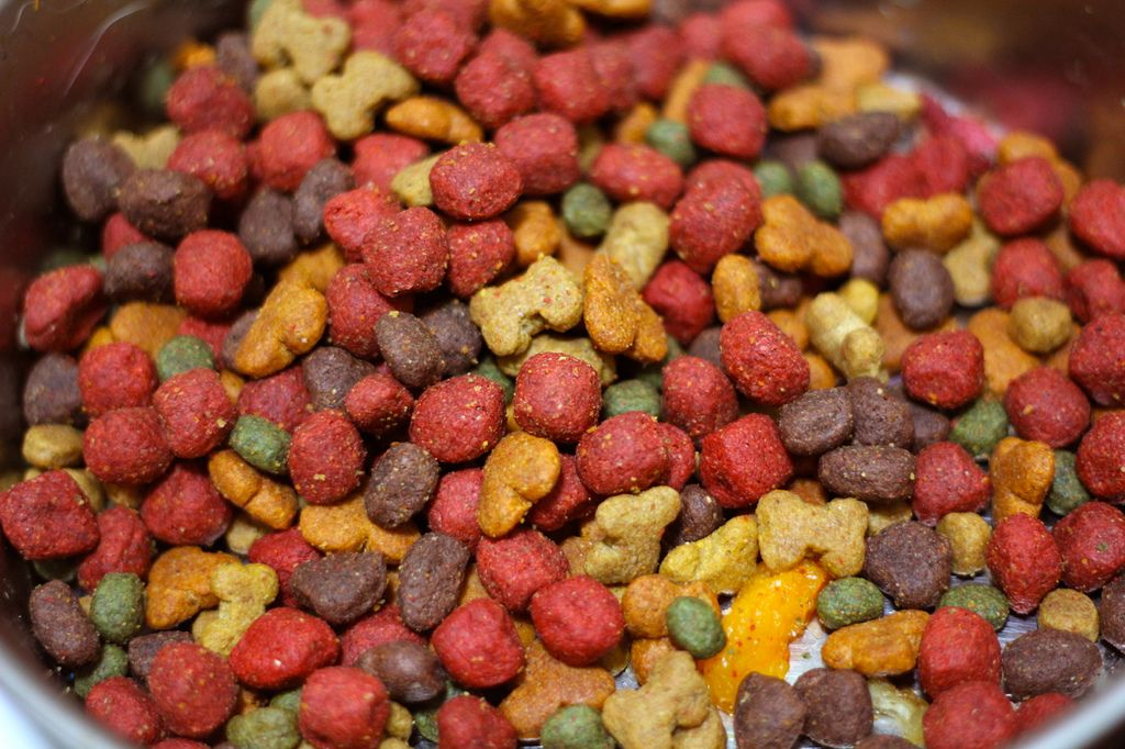 5 Ingredients You Never Want To Find In Your Dog S Food Puppy