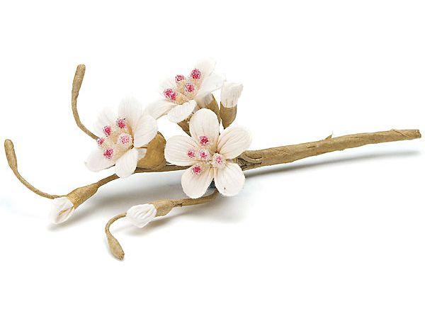 sugared cherry blossom
