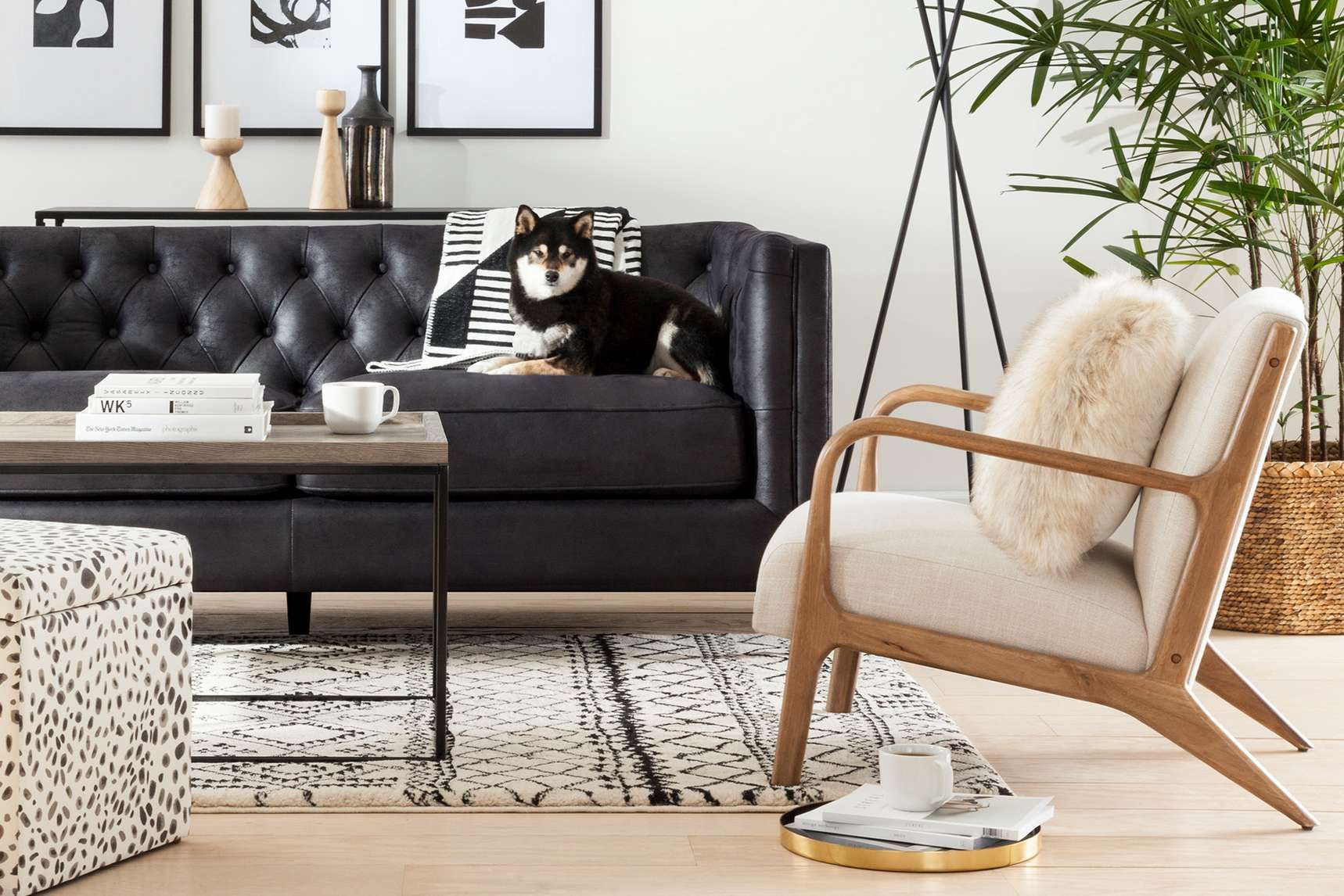 Shop Target For Project 62 Living Room Furniture You Will Love At