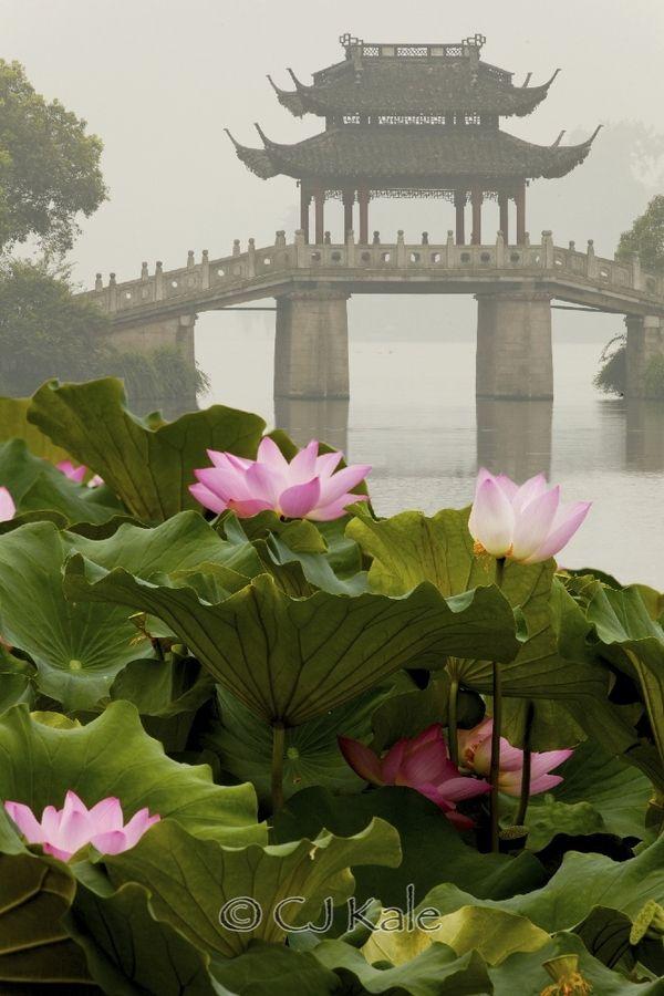 West Lake Impressions by Cj Kale on 500px Bridges Pinterest - chinesischer garten brucke