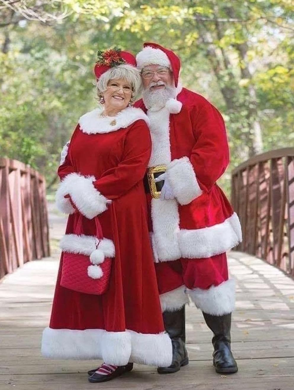 Pin By Georgette Sowash On X Mas Mrs Claus Outfit Mrs Clause Costume Mrs Santa Claus Costume