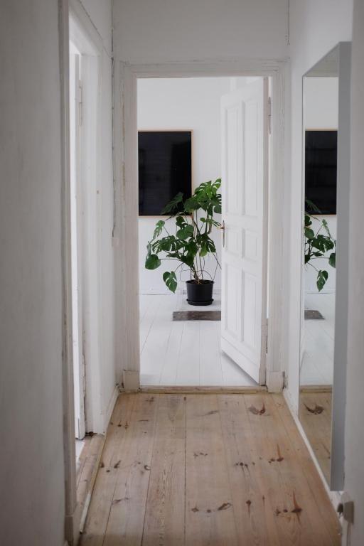 Schöner einfacher Flur mit Spiegel in minimalistisch