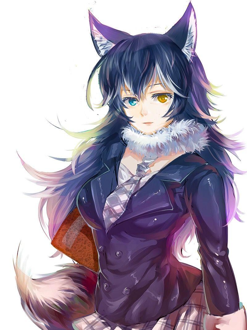 Grey Wolf Friend anime, Cat girl, Kemono friends