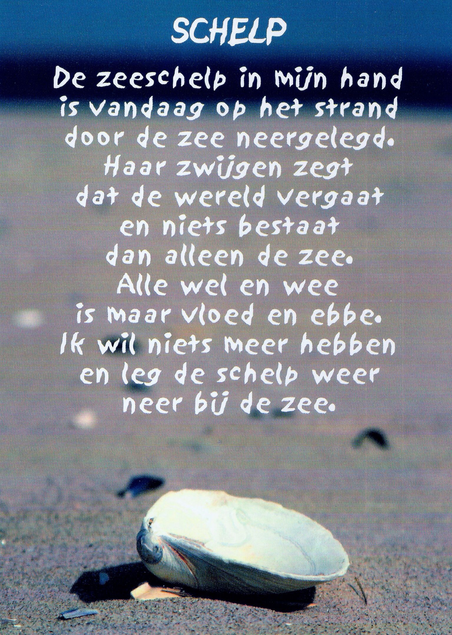 A Roland Holst Gedichten Op Het Strand En Het Strand