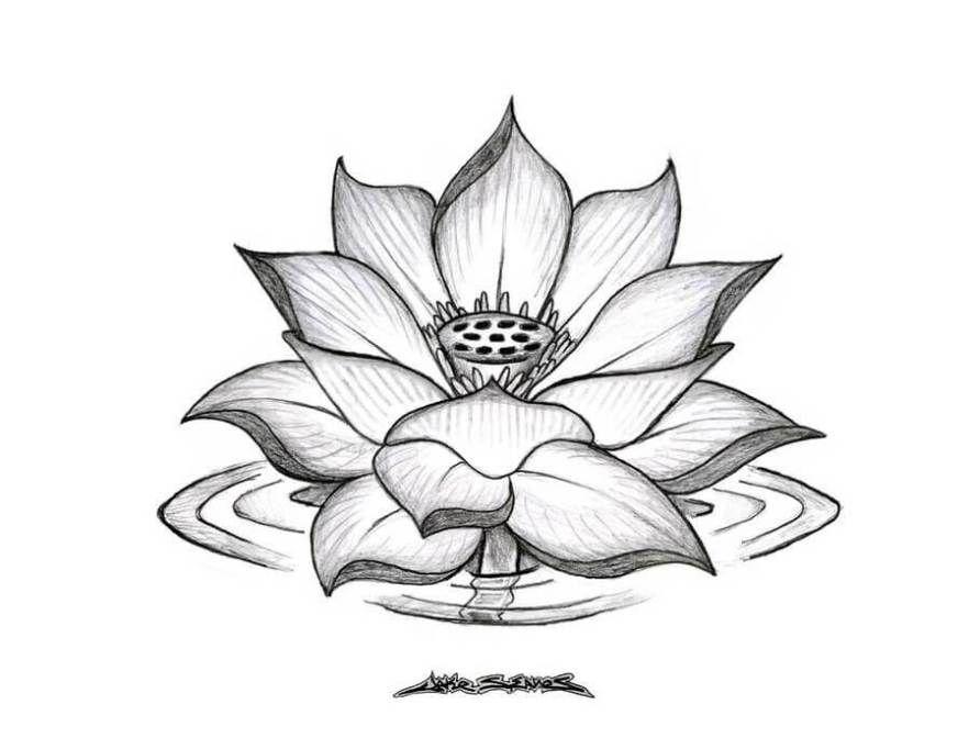 Menggambar Bunga Yang Mudah Digambar