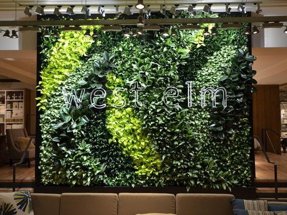West Elm S Living Green Wall Is A First In Kuwait Green Prophet Green Wall Living Green Wall Living Green Walls