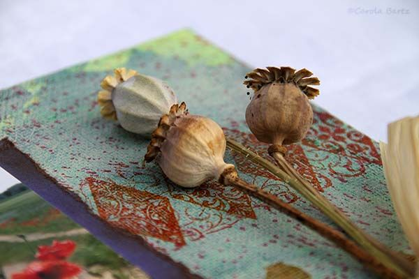 Poppy seed pods on a mixed media painting