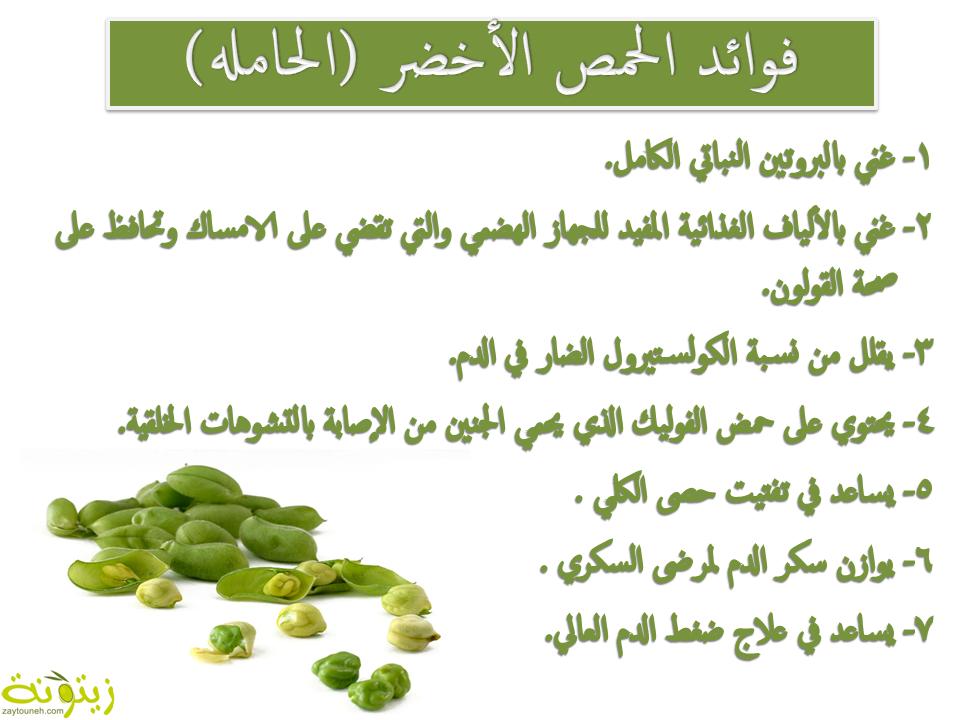 فوائد الحمص الأخضر الحامله Health Info Free Download