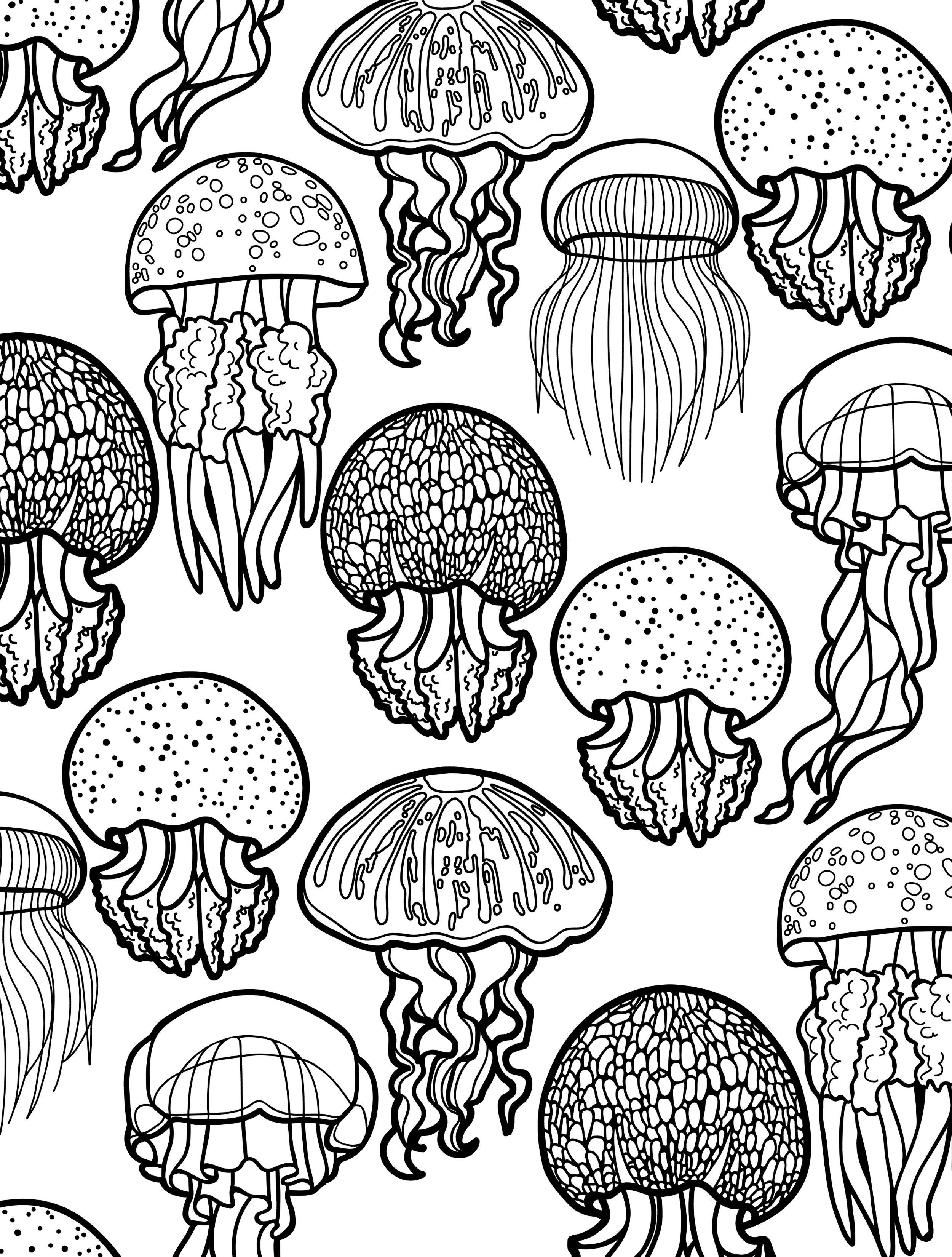 ocean themed coloring pages for adults to color pic Paper Art