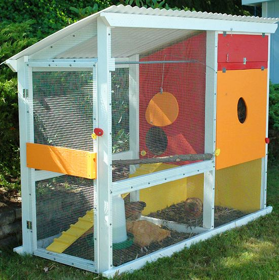 Queen bee coupons colorful predator proof chicken coop - House to home designs coupon code ...