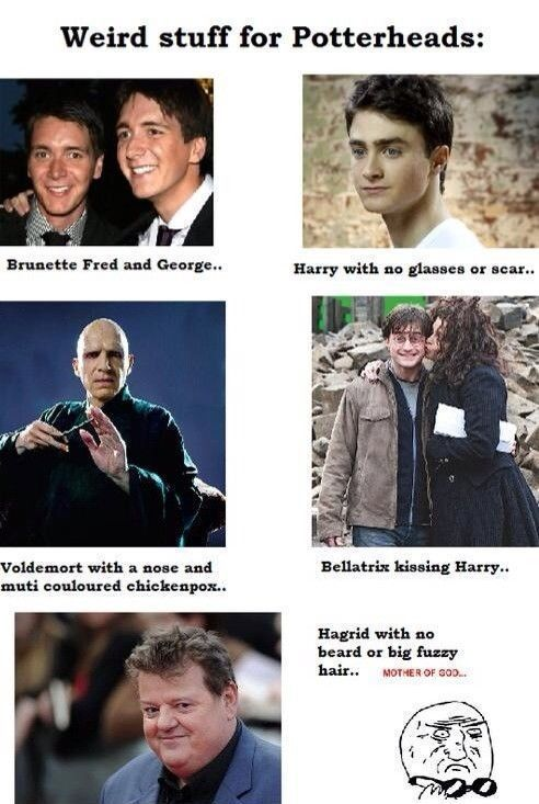 Collection Of Harry Potter Memes Harry Potter Memes Harry Potter Cast Harry Potter Jokes