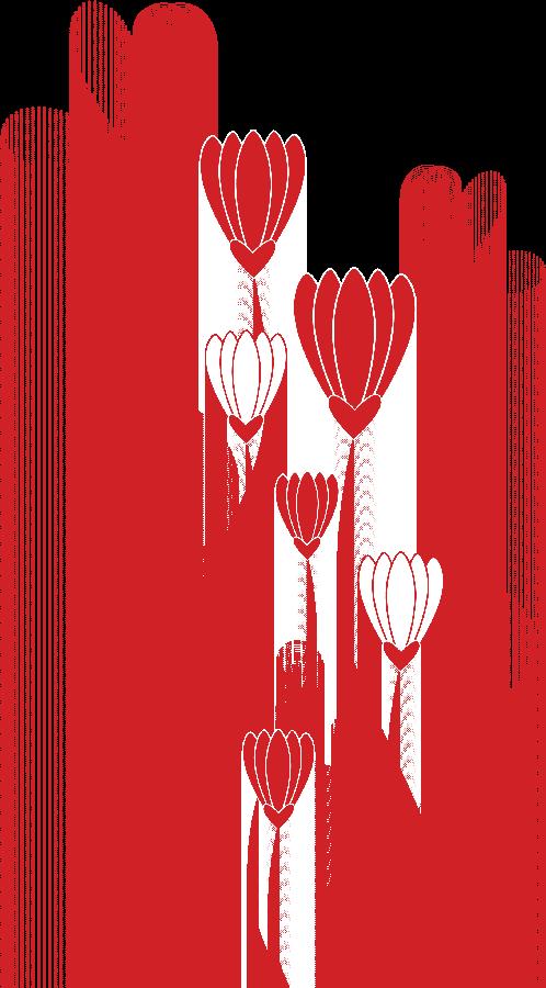 Flores Ilustraciones en PNG para Artesanía y Diseños Primavera ...