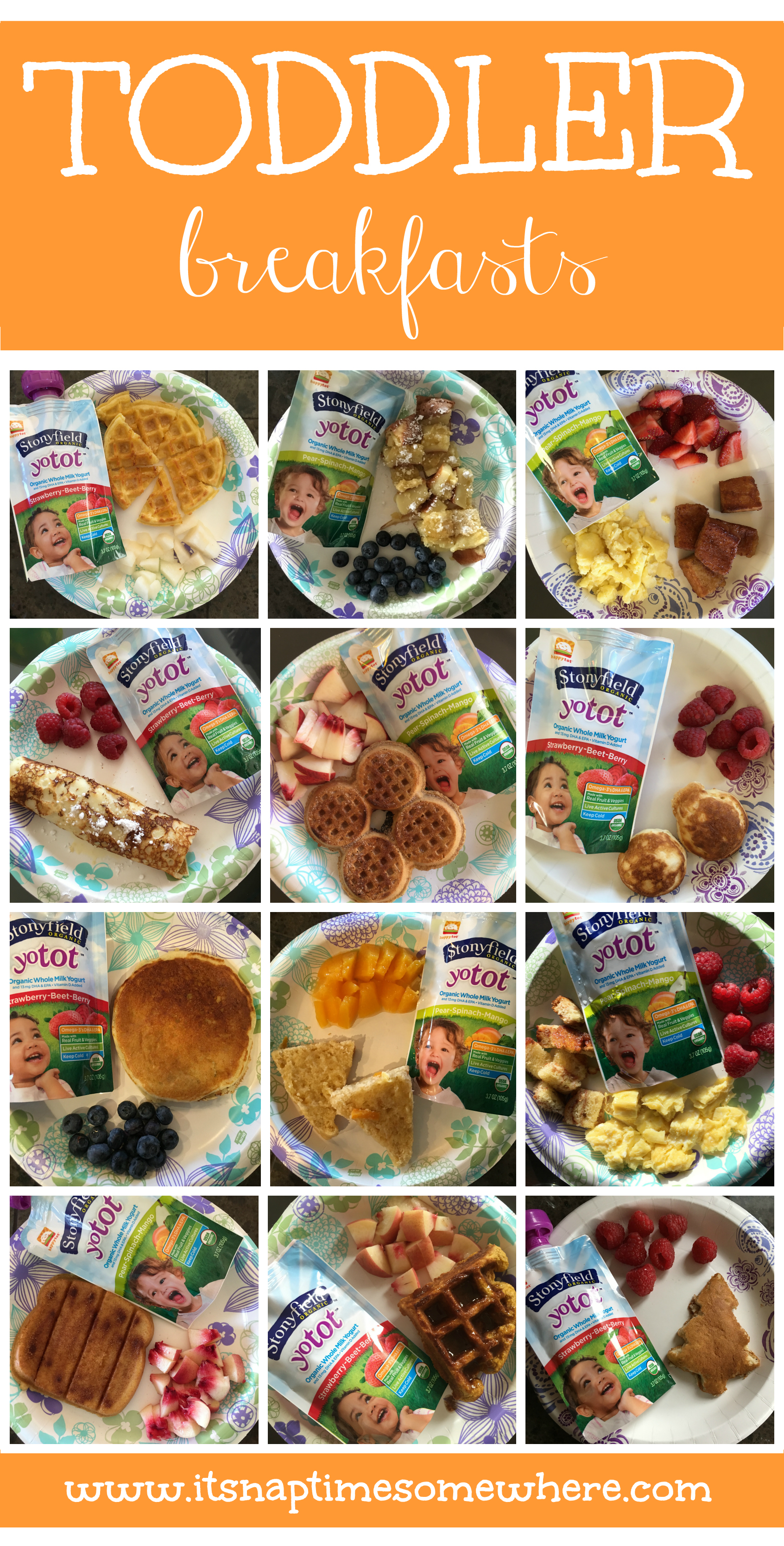 a collection of 36 different toddler meals to help anyone looking