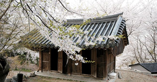 Beautiful Korean building, I love it!