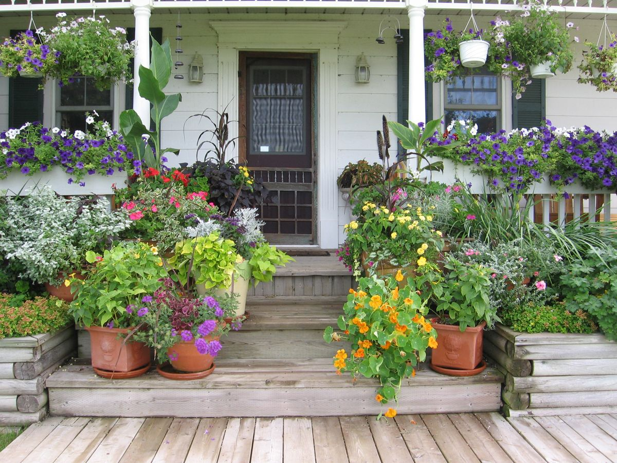 potted entry way in ontario garden - Garden Ideas Ontario