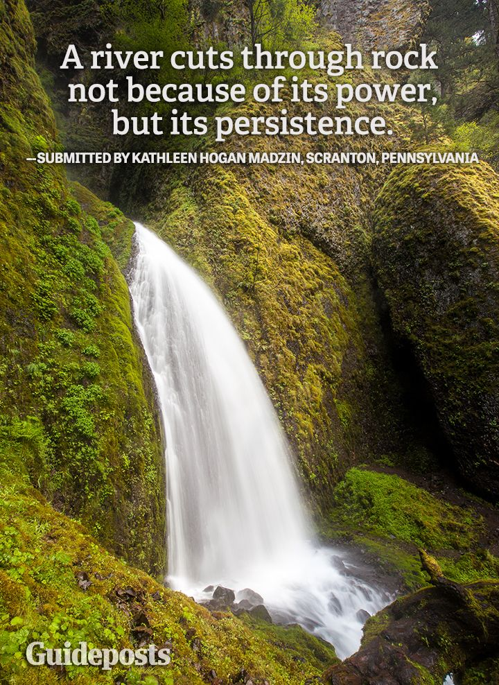 Perseverance Quote Persistence River Rock With Images