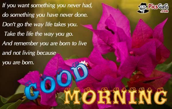 Good morning quotes good morning good night good morming pinterest good morning quotes good morning m4hsunfo