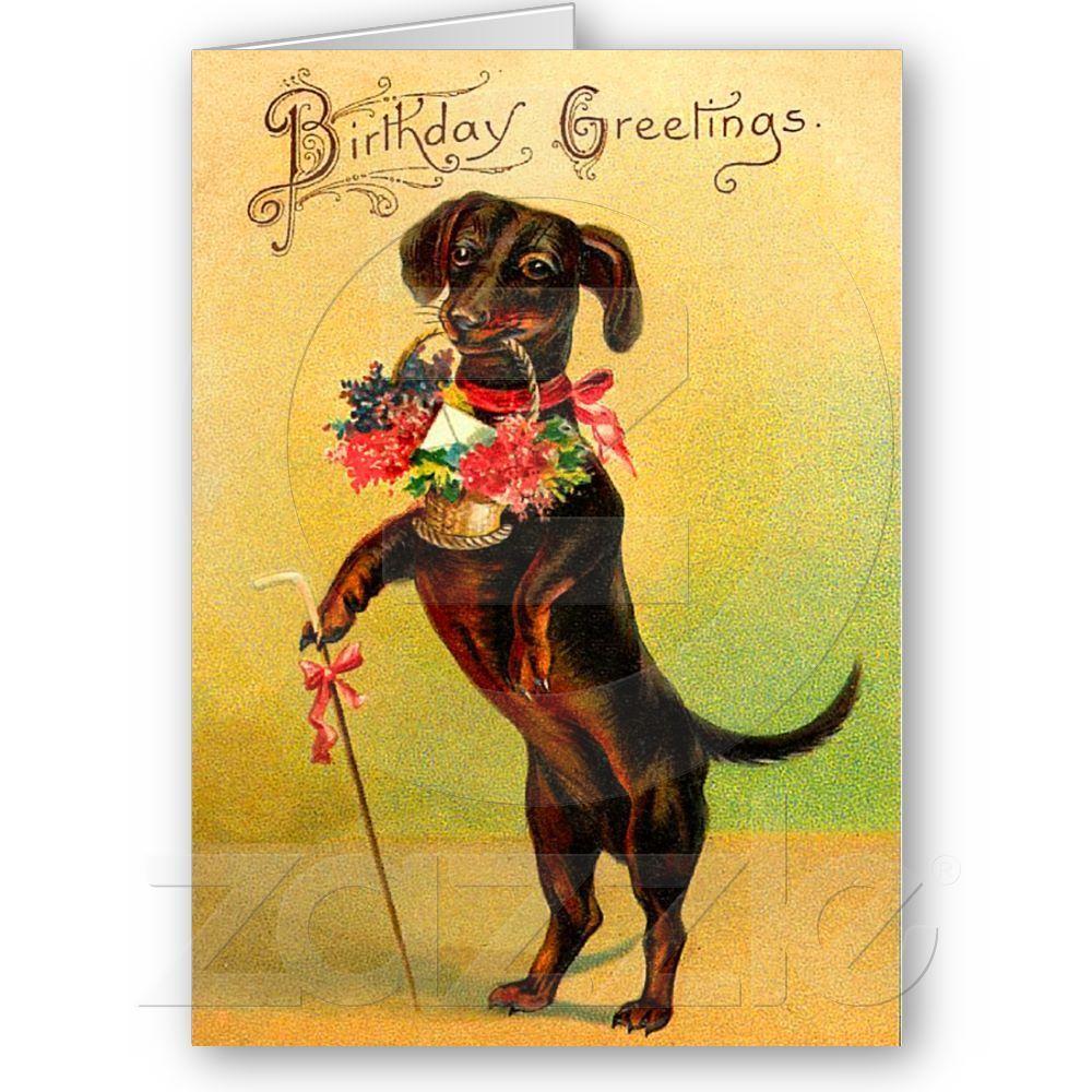 Vintage Dachshund Birthday Card Vintage Dachshund Birthday