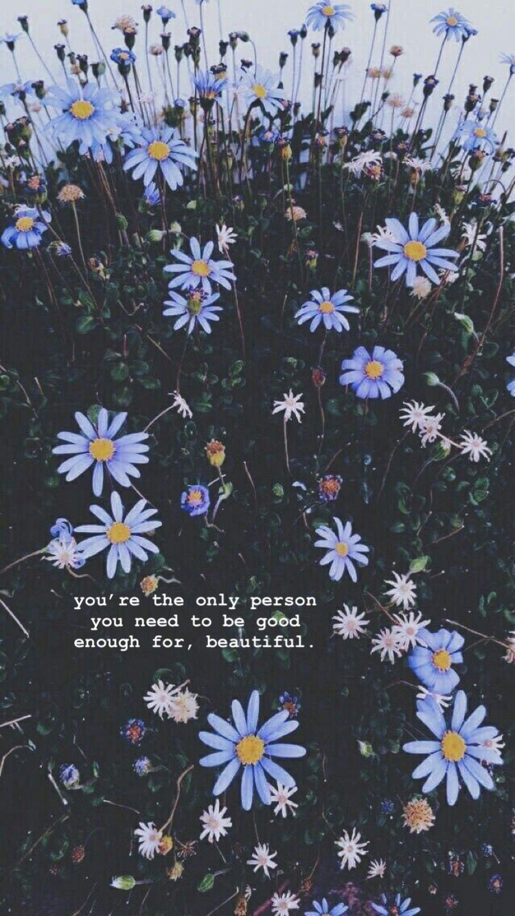 Aesthetic Simple Quote Backgrounds