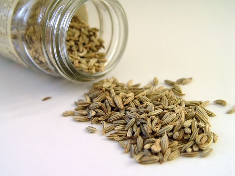 Benefits of Fennel Seed #health-Benefits #Fennel-Seed #anise