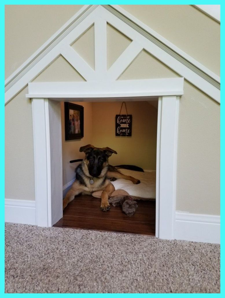 Have A Look At Our Pet Dog Room Decor Choice For The Very Best In