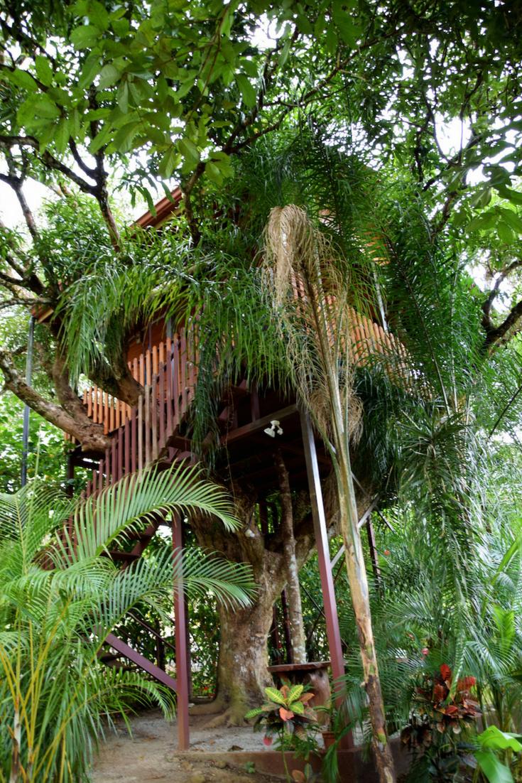 La Fortuna Hotel Guide Where To Stay Near Arenal Volcano Two Weeks In Costa Rica Costa Rica Hotel Arenal Costa Rica Costa Rica Travel