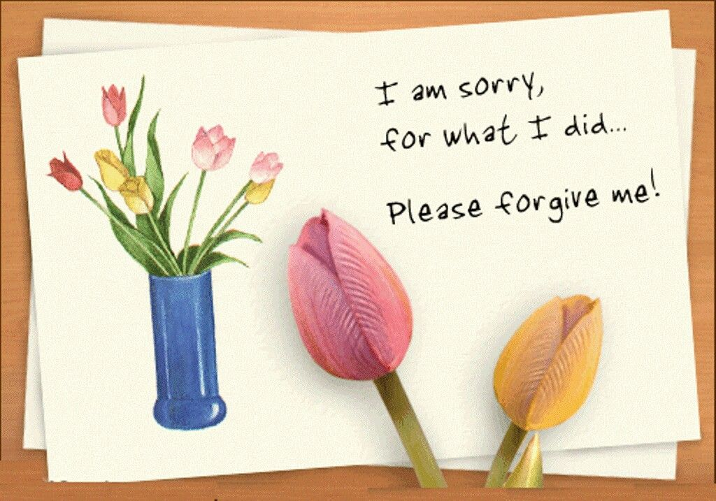 Wil u accept my sorry