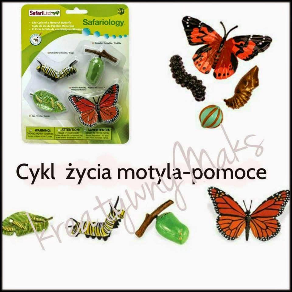 Motyl Czesc 1 Montessori Bee Insects