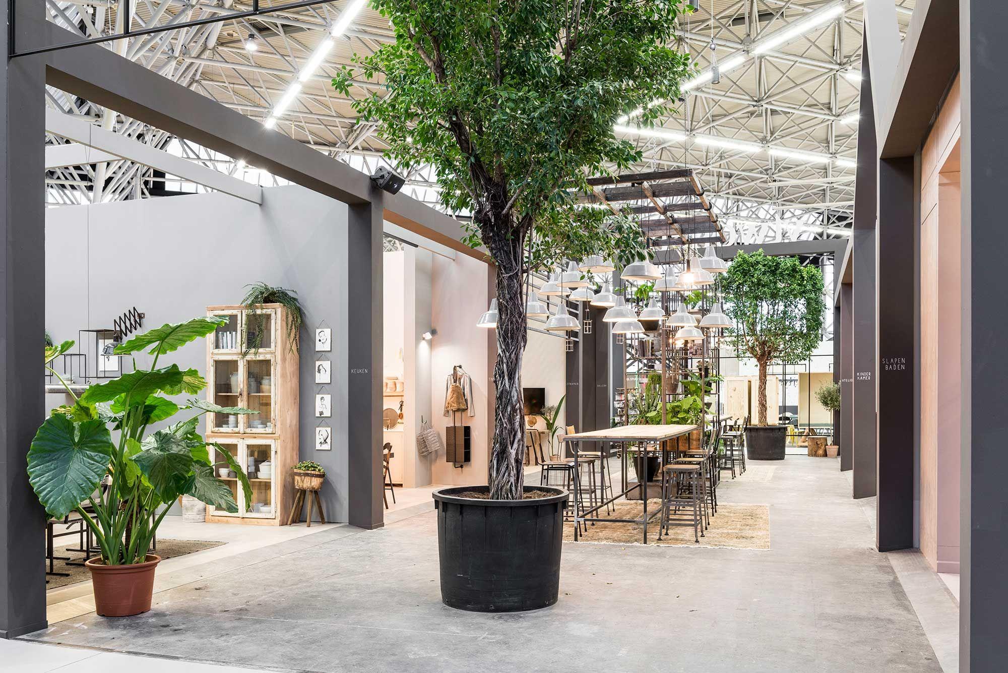 Boom in hal van het vtwonen huis op de vt wonen design for Huis de beurs