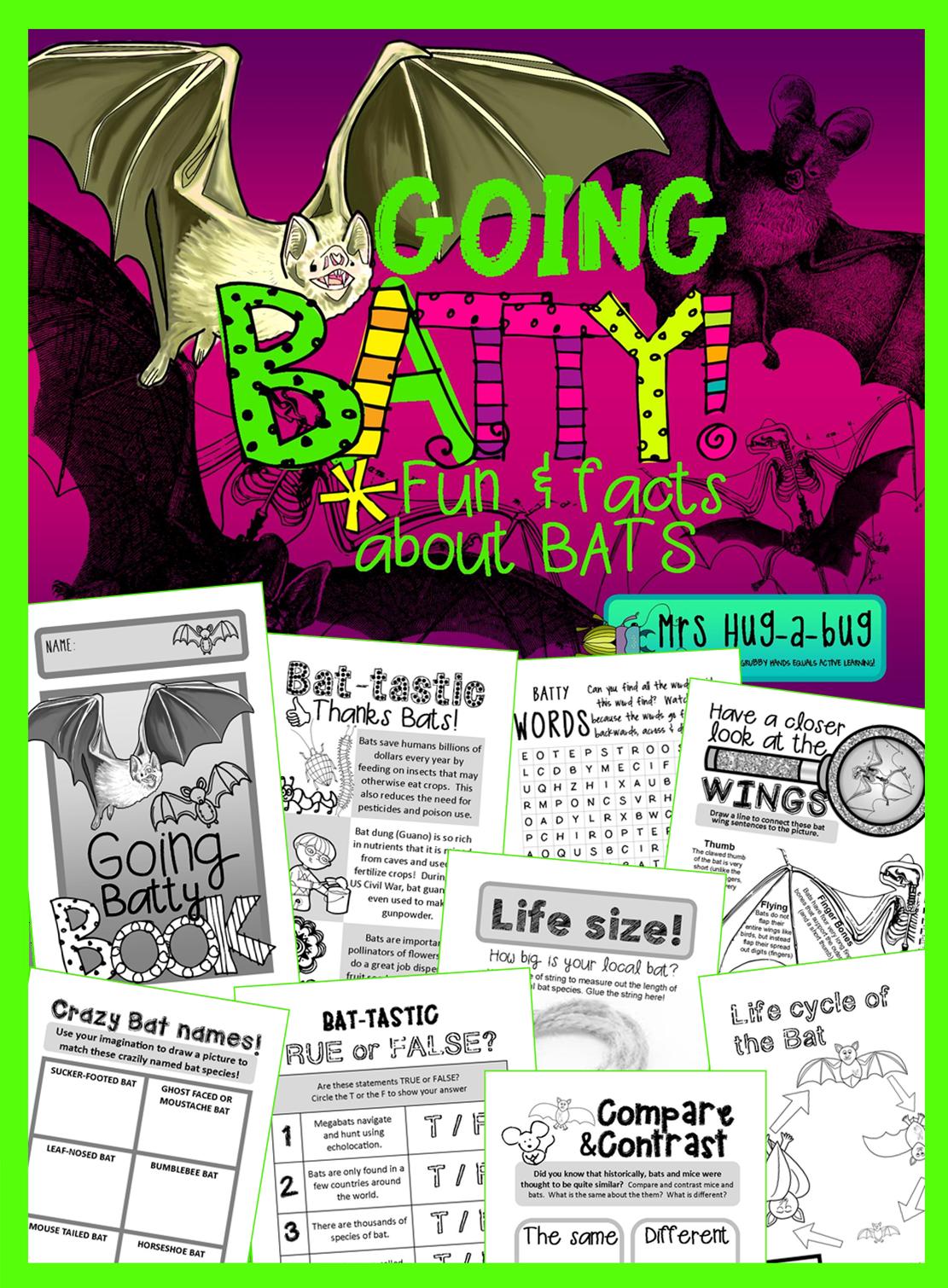 Bats A Fun Amp Facts Booklet Celebrating Bats