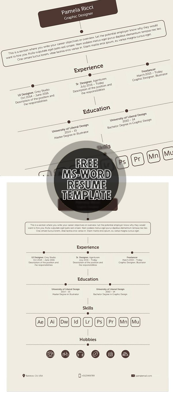 Free MsWord Resume Template  Resumes    Template