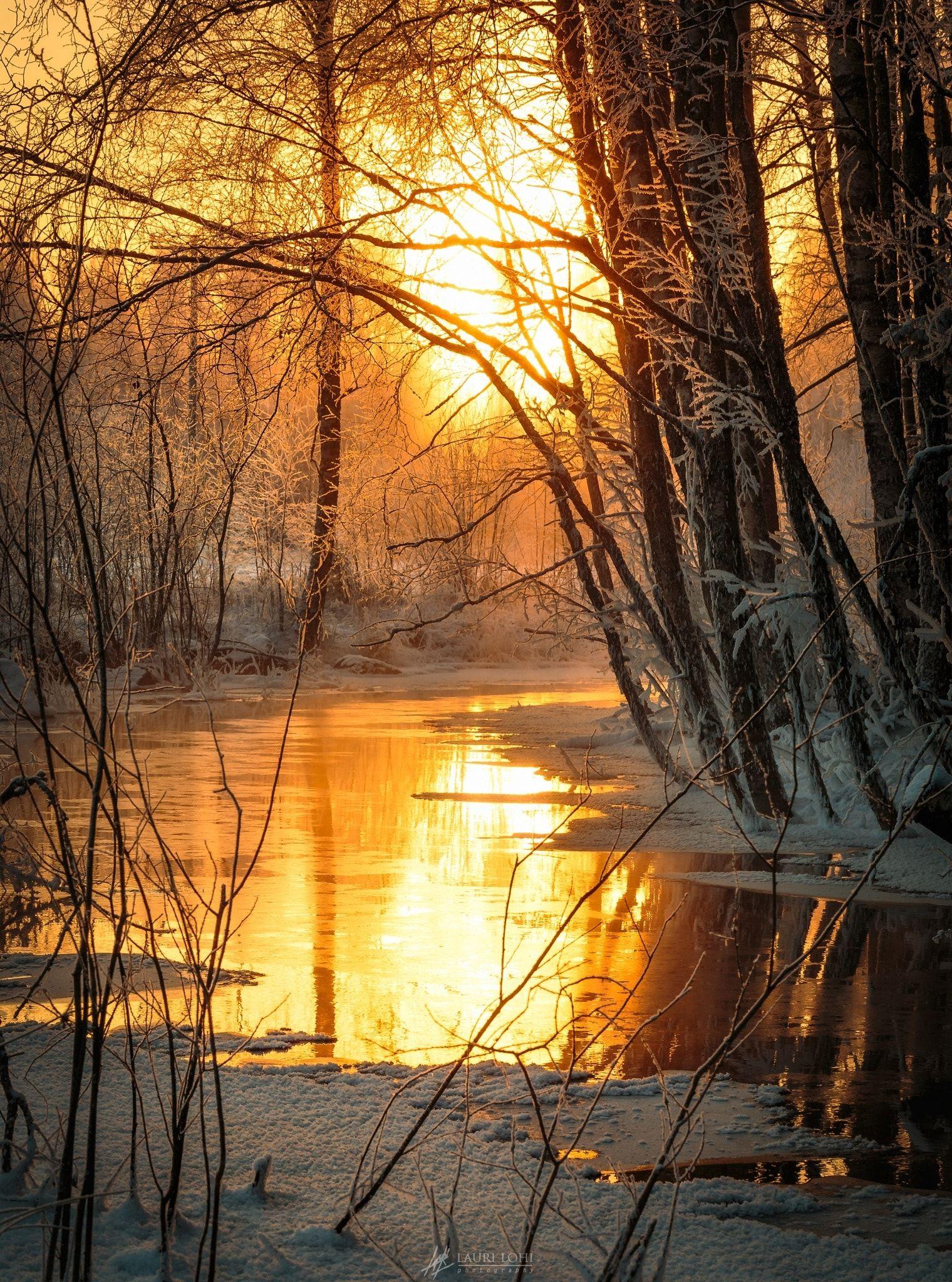 Wallpaper Fall River Ma Forest Creek Beautiful Winter Morning Light Reflecting