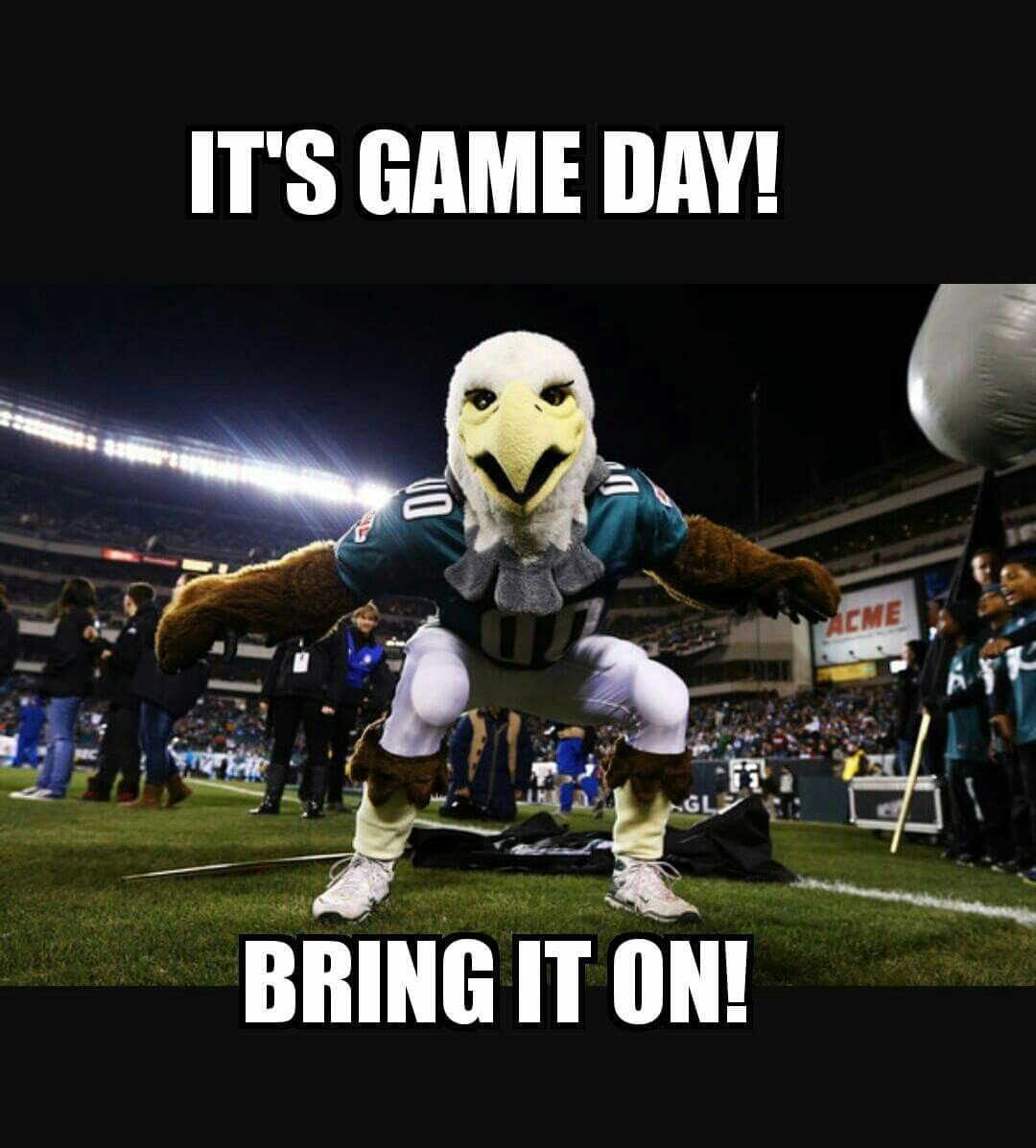 Eagles Sports Pinterest Eagles Philadelphia Eagles And