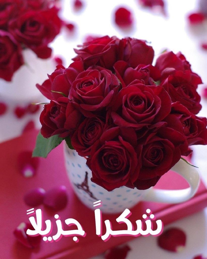 Tumblr Messaging Pdme8inm6w1vlgjg2 1280 Jpg 820 1024 Happy Birthday Flower Birthday Flowers Bouquet Sunday Rose