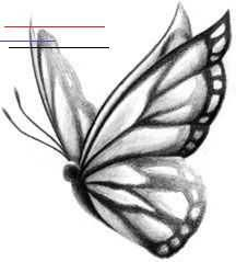 Butterfly sketch, one day I will get one for you, mom.#Butterfly <a class=pintag href=/explore/cattattoo/ title=#cattattoo explore Pinterest>#cattattoo</a> <a class=pintag href=/explore/Day/ title=#Day explore Pinterest>#Day</a> <a class=pintag href=/explore/liontattoo/ title=#liontattoo explore Pinterest>#liontattoo</a> <a class=pintag href=/explore/Mom/ title=#Mom explore Pinterest>#Mom</a> <a class=pintag href=/explore/sketch/ title=#sketch explore Pinterest>#sketch</a>