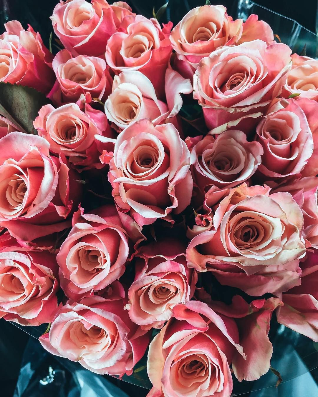 I wish that I can say someone bought these flowers for me ...