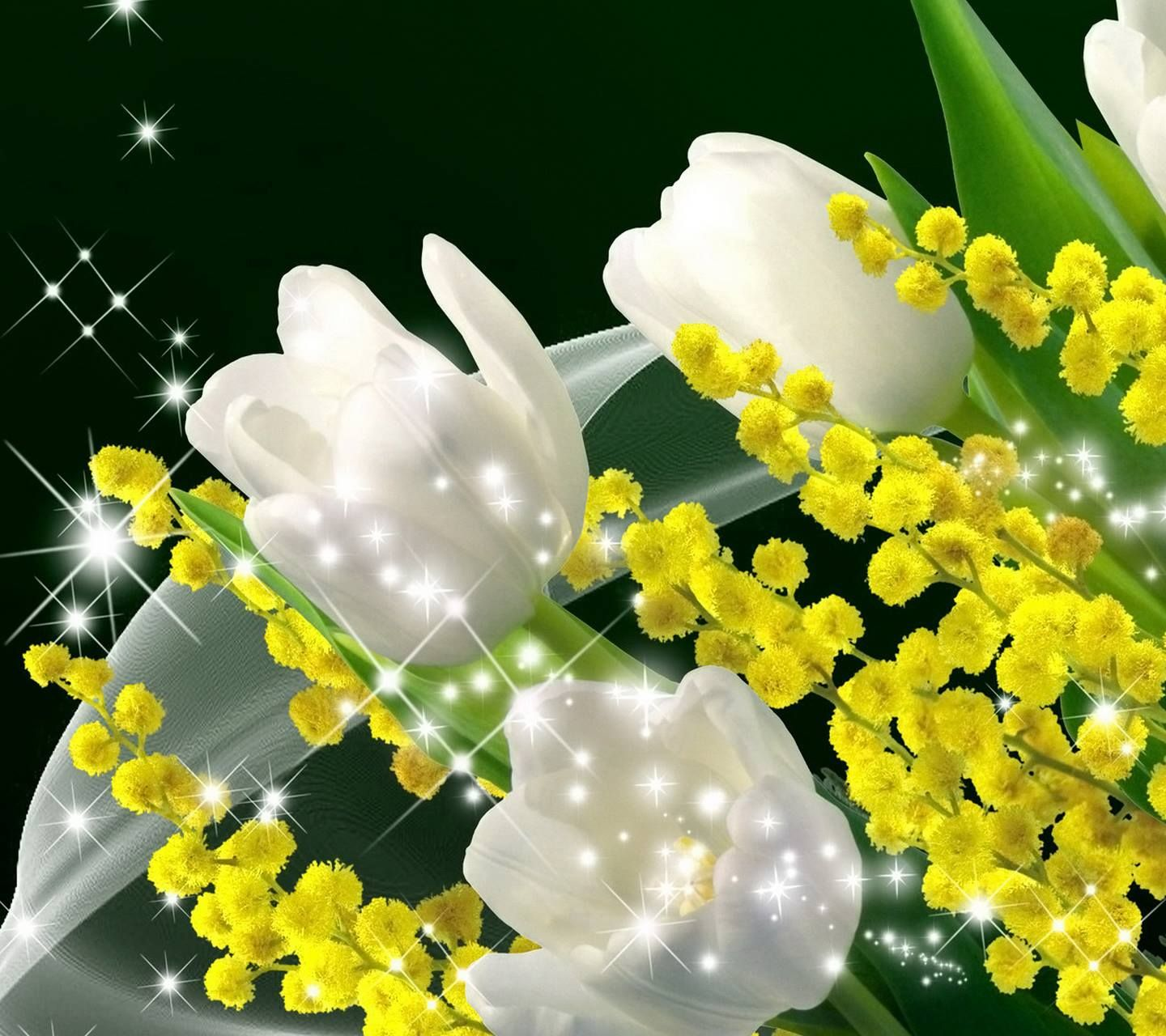 Awesome beauty black background with the beauty of flowers and