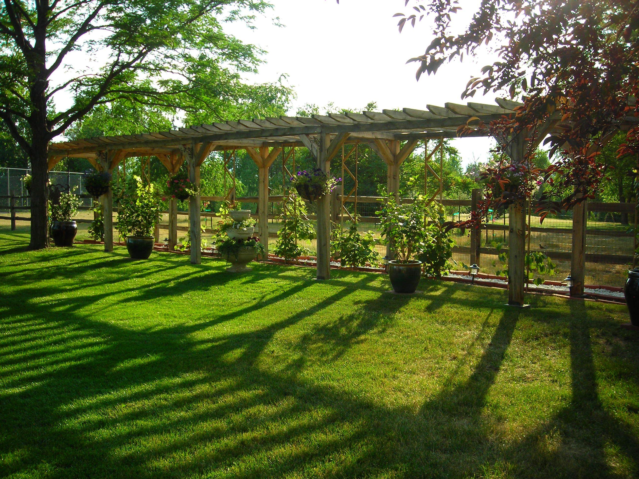 Backyard Pergola Arbors Gates Backyard Vineyard