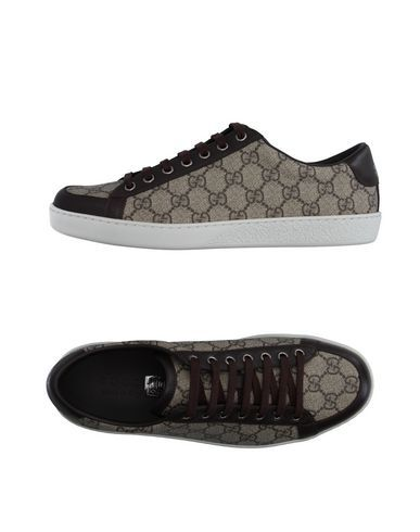 free shipping 18846 c2afb  gucci  shoes  low-tops Gucci Sneakers, Gucci Skor