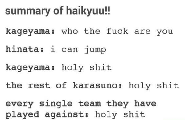 Photo of That's it. That's the entire show   Haikyuu!!