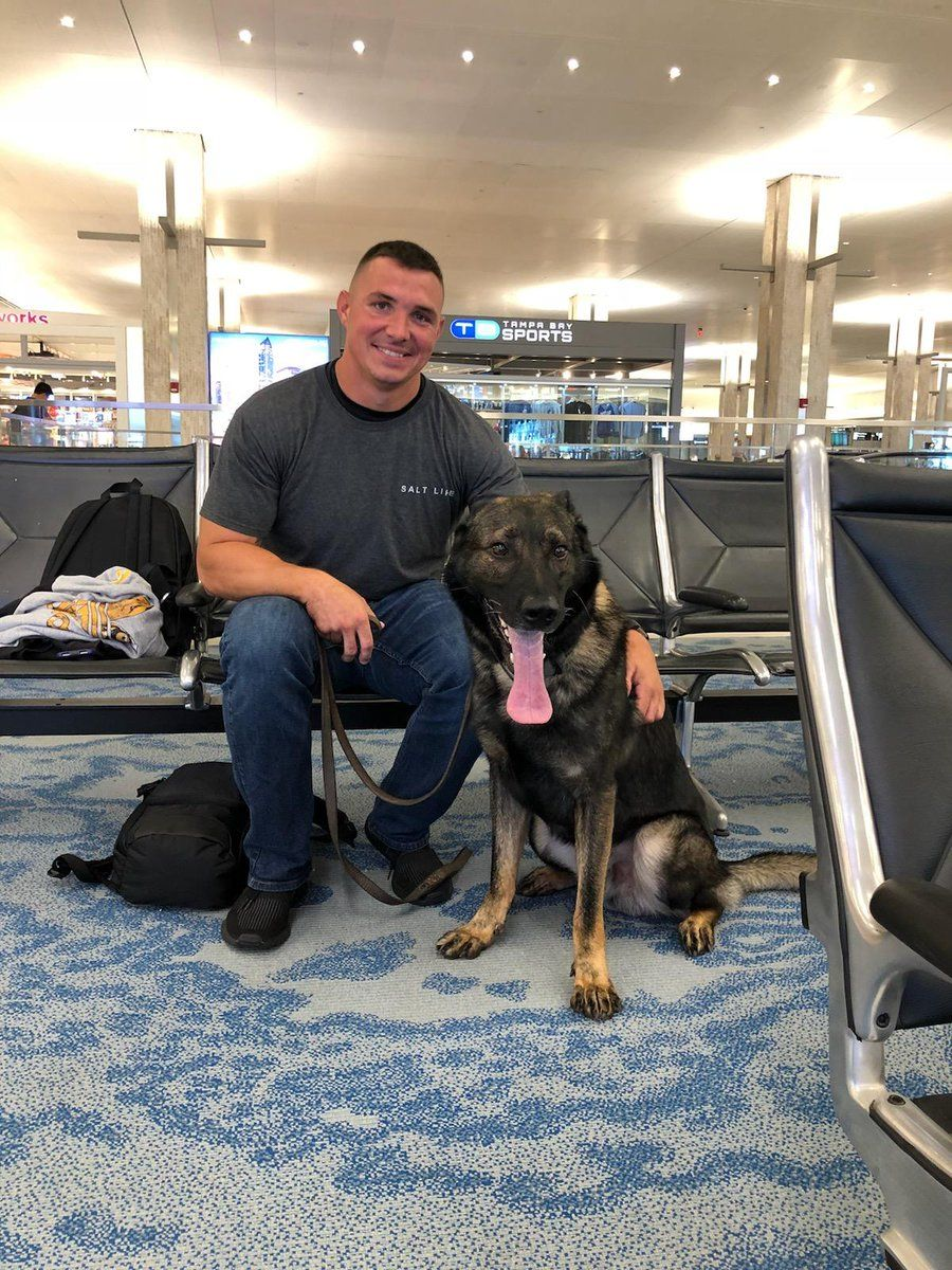 Pin By Caitlin Struth On Handsome Men Military Dogs Police Dogs Military Working Dogs