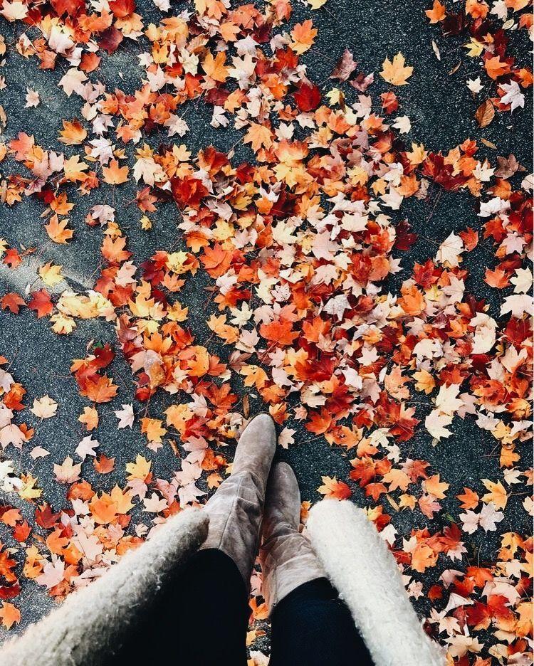 картинки для инстаграма про осень для