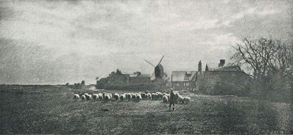 Benjamin Gay Wilkinson, England :  Return of the Herd. 1894