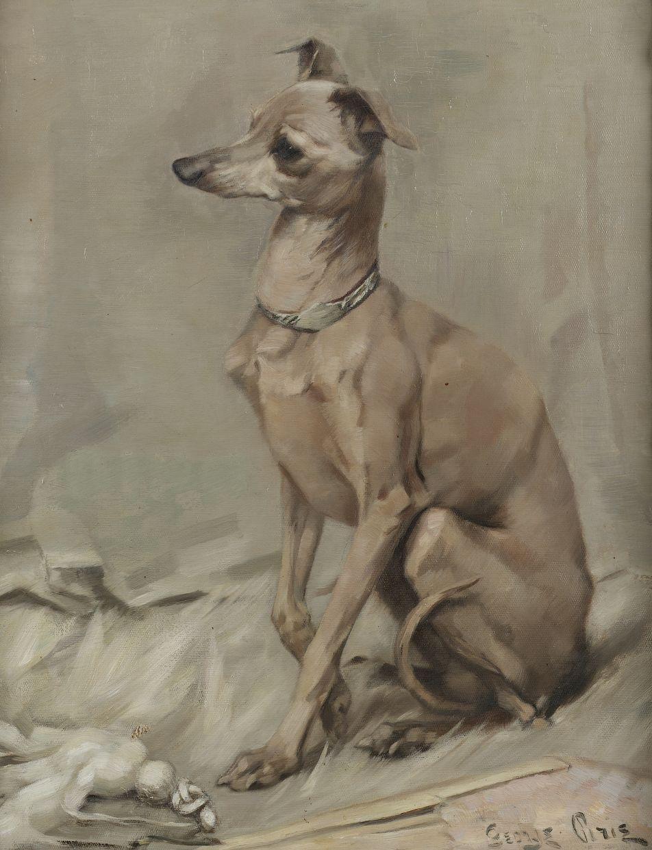 Italian Greyhound by Sir George Pirie (1863-1946).