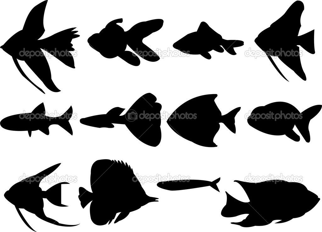 Fish Silhouette Fish Silhouette Fish Clipart Animal Silhouette