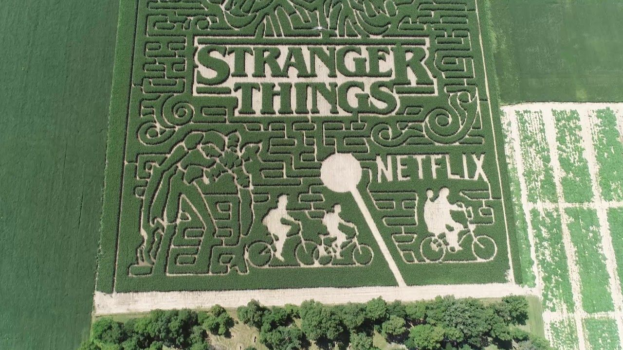 Stranger Things Corn Maze At Exploration Acres Youtube Corn Maze Stranger Things Stranger