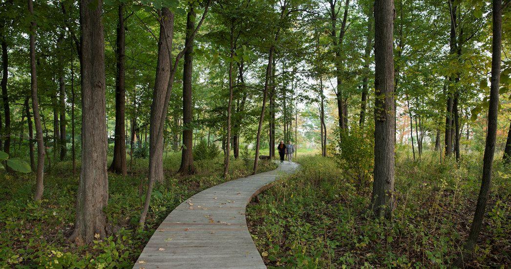 Stephen Stimson Associates Forest Park With Images Forest Park Forest Park