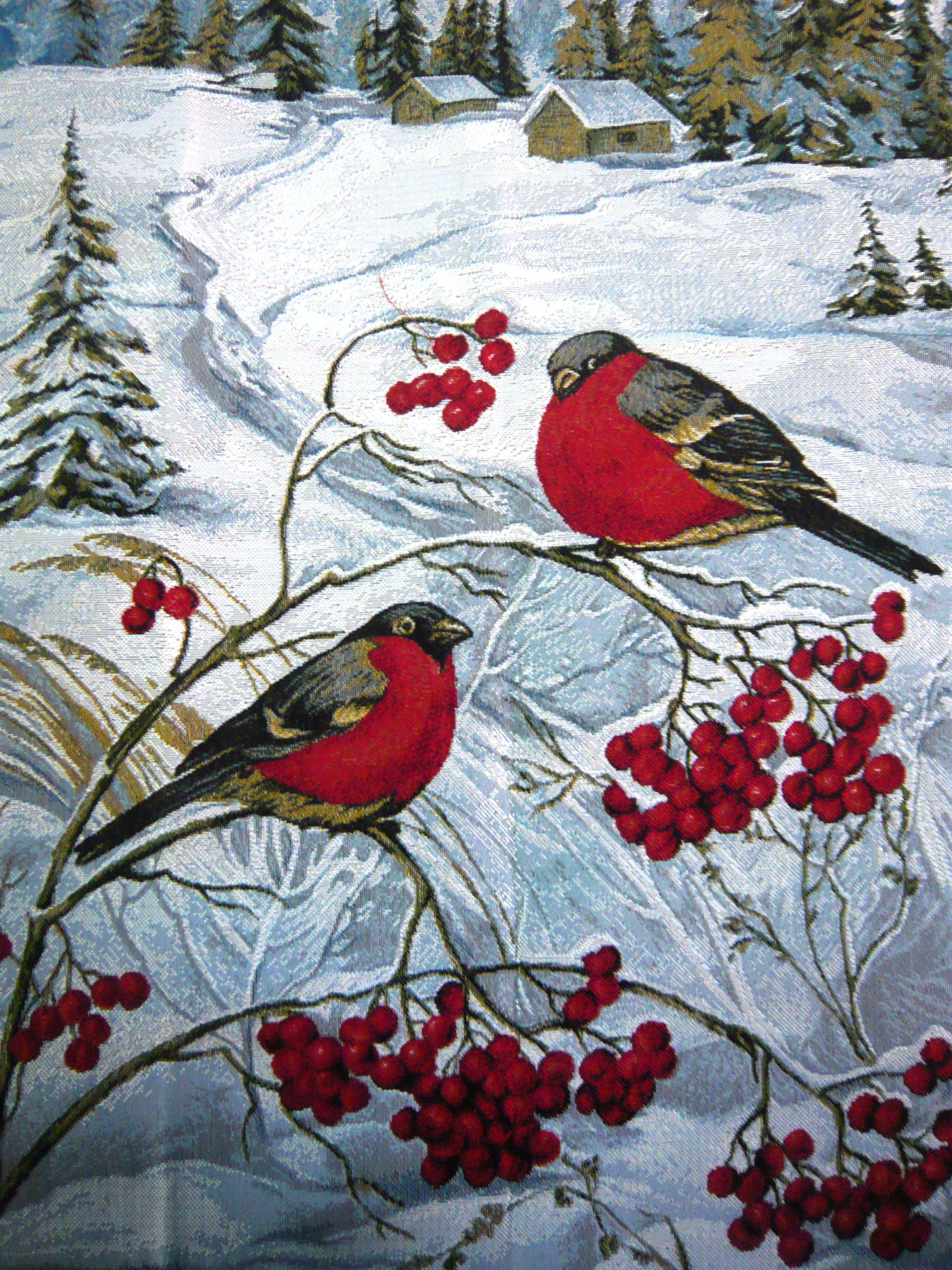Снегири зимой открытка