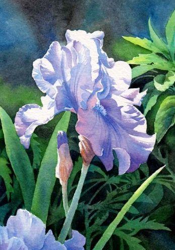 Акварельные цветы для открыток